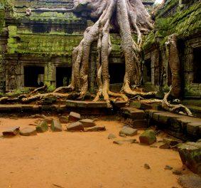 Je m'envole pour Phnom Penh dans quelques semaines